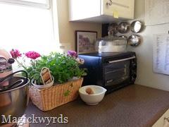 blog kitchen garden 2014