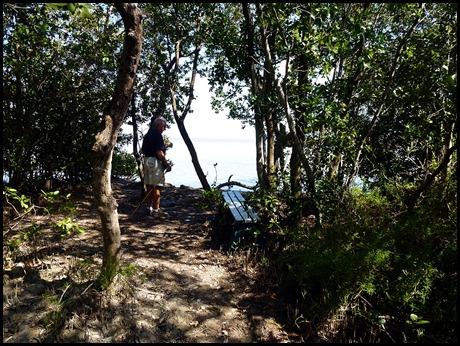 16 - Snake Bight throught the Mangroves