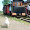 Rautatiekoira Teri. Taustalla Minkiön ja Jänhijoen välillä juhlapäivänä liikennöinyt lisäjuna.
