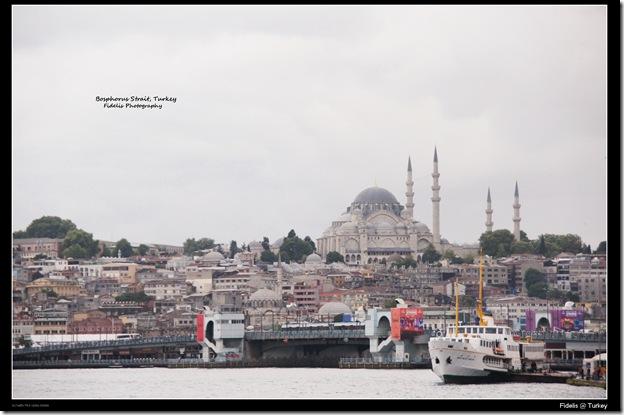 Turkey 81