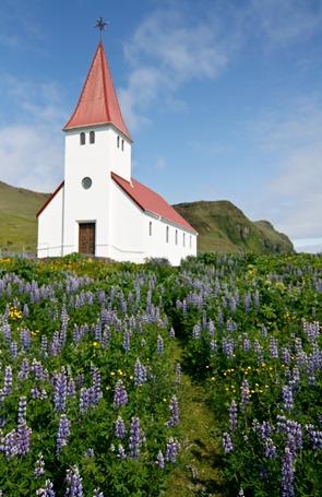 Iceland-2929