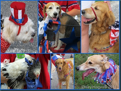 Doo-Dah Dogs Collage
