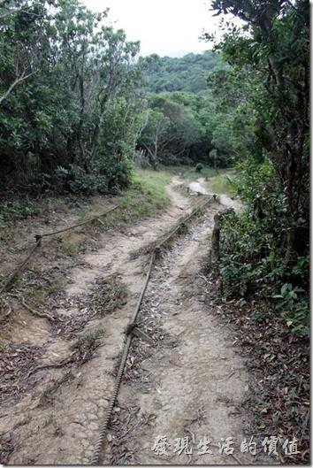 屏東-旭海大草原。早期的步道就是用這種纜繩來輔助遊客進出旭海草原,不過現在這些纜繩大多已經漸漸淹沒在荒煙黃土之下了。