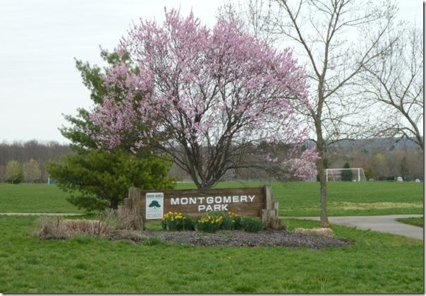 Montgomery-park