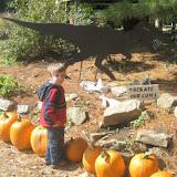 Fall 2009