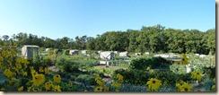 Jardins populaires de Fontainebleau