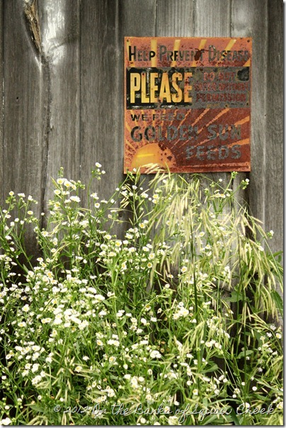 old rusty &quot;prevent disease&quot; sign