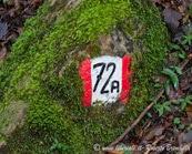 32_segnavia Lierna e frazioni (120)