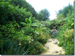 2012.08.01-002 jardin exotique