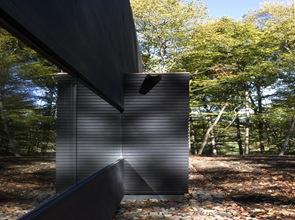 fachada-de-madera-nogal-negra