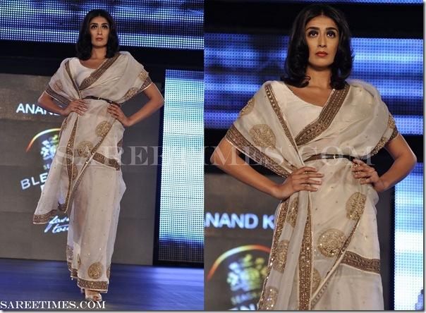 Anand_Kabra_Embroidery_Saree