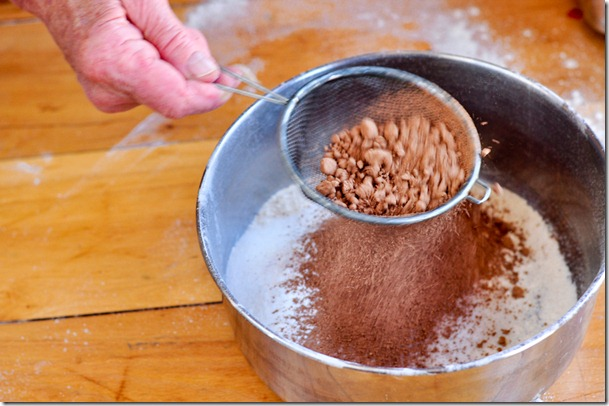beet-chocolate cake-8214