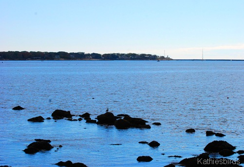 3. gloucester harbor-kab