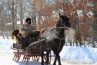 Black hose sleigh