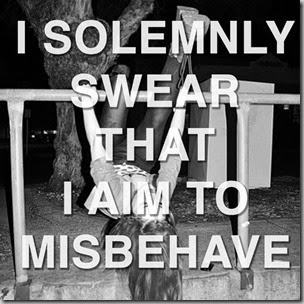 solemnly swear-misbehave