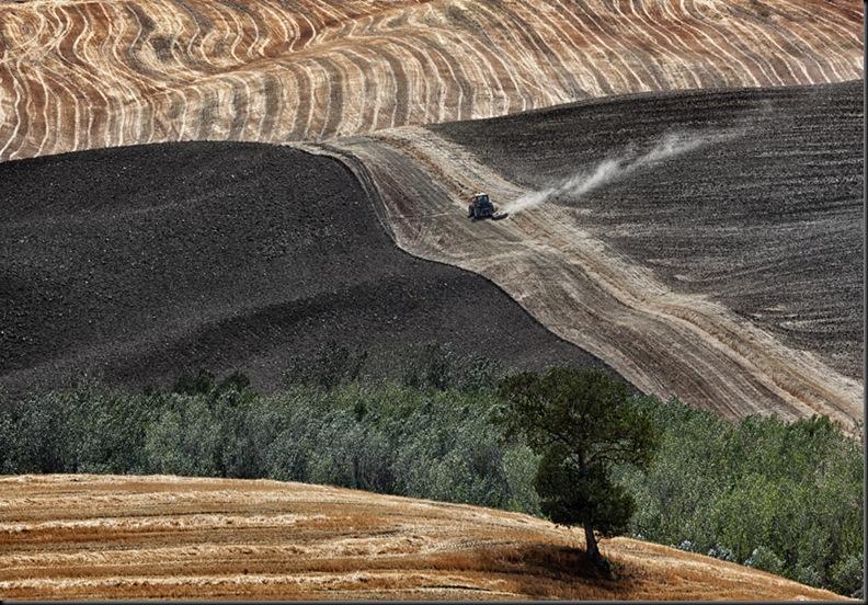 Toscana-a28576354