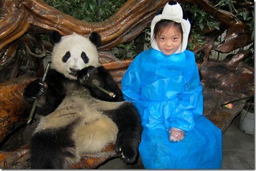 IMG_2965LR_Pandas