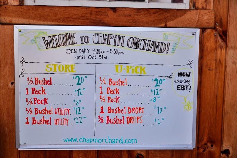 Chapin orchard-8893