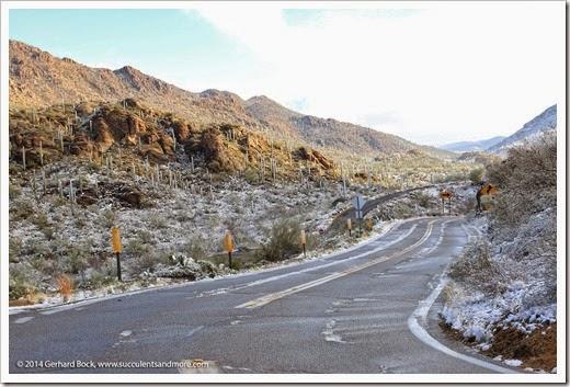 150101_TucsonMtPark_0098