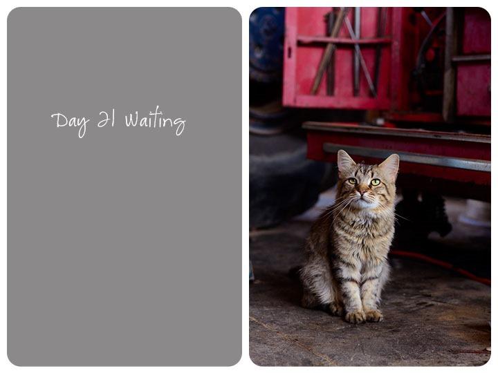 21 waiting