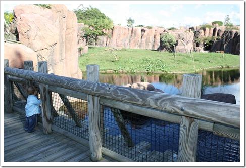 Zoo 020