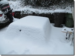 snow day 06