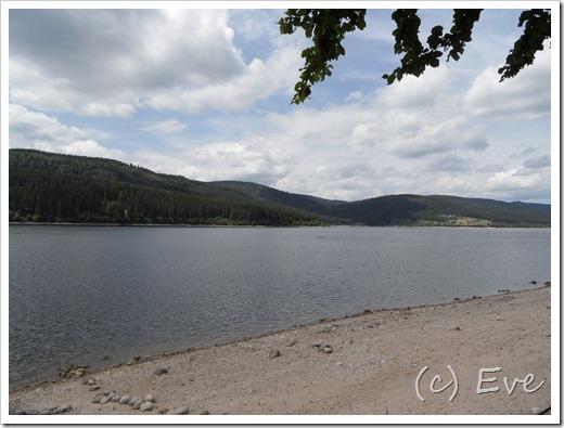 Juni 2011 Schwarzwald 160