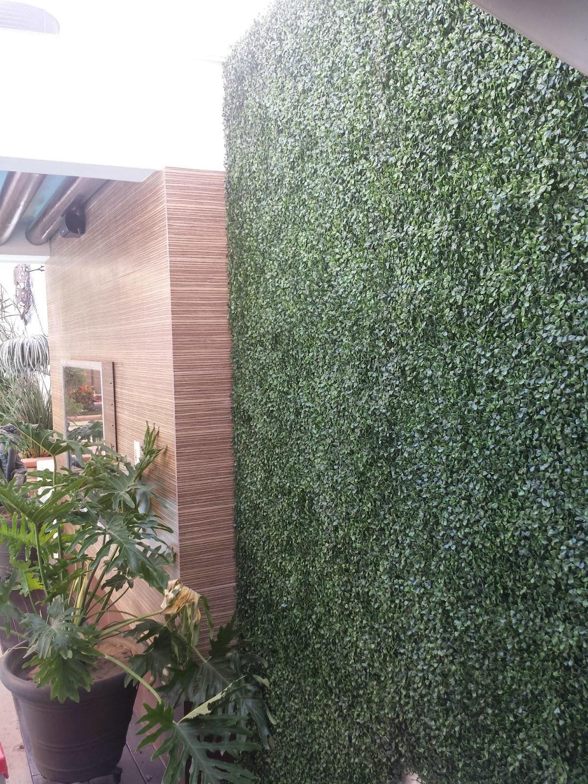 Culiacan 667 7501750 lideres en pasto artificial 1 for Follaje para jardin