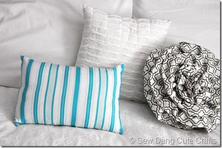 Throw-Pillow-(2)