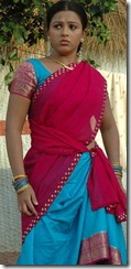 swetha in half saree