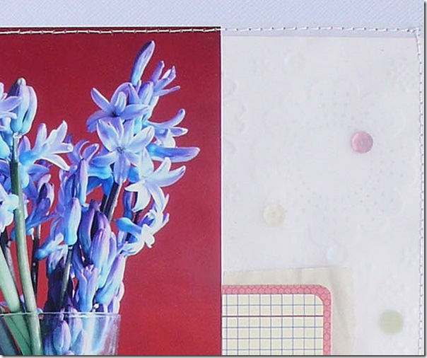 Anna Drai - big shot - scrapbooking - Hello Spring (4)