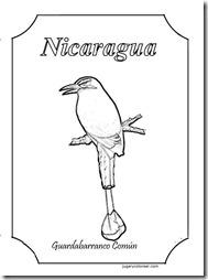 guardabarranc 1