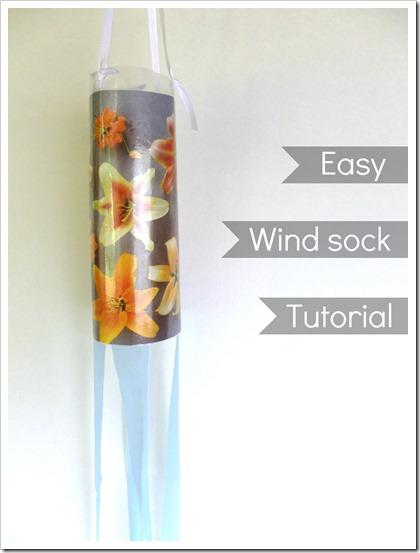 wind sock 5