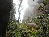 Below the cliffs of Puncak Serendit on Gunung Ranai (Dan Quinn, September 2013)