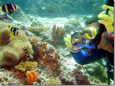 Scuba_diving_picture