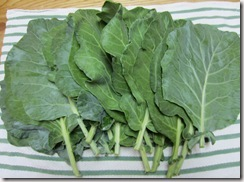 Collard harvest 31 Jul 2011