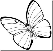 colorear mariposas pintaryjugar com (22)