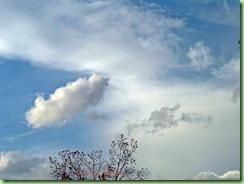 sky101_0010