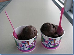 9999f Tennessee - Pigeon Forge - Baskin Robbins chocolate fudge ice cream