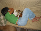 While human sleep cycles seem to be longer than dog ones, both humans and their canine counterparts dream during REM sleep.