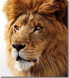 mac-os-x-lion-1298557423