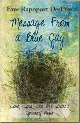 Message from a Blue Jay cover