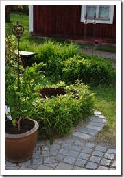 trädgården 21-5-11 117