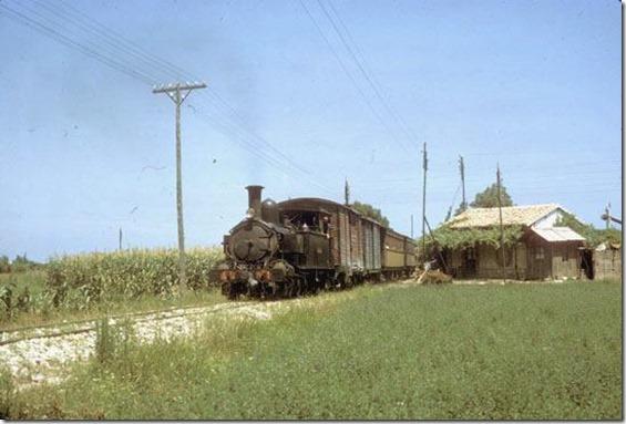 TrainCol (41)