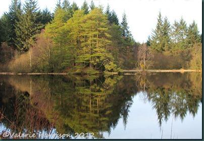 17-reflections-landscape