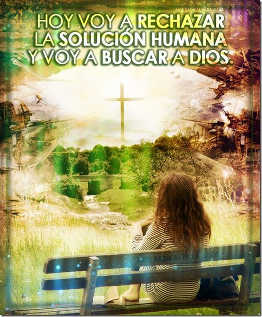 Solucion Humana