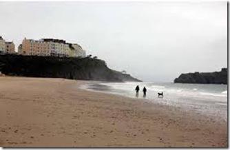 creatura ciudata pe plaja