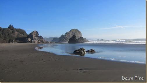 Harris Beach_107