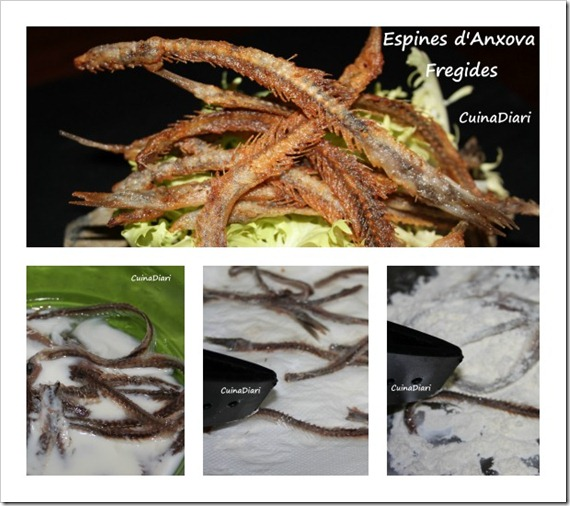 4-espines anxova fregides-ppal2