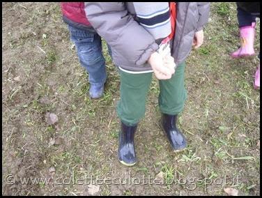 I bambini delle classi 1° della Scuola Primaria di Padulle piantano il grano! (11)
